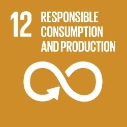 United Nataion SDG 12 Responsible Consumption and Production
